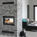 2-Sided Fireplace Insert