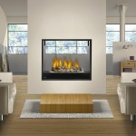 2-Sided Gas Fireplace Inserts