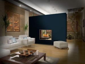 Extra Small Gas Fireplace Inserts