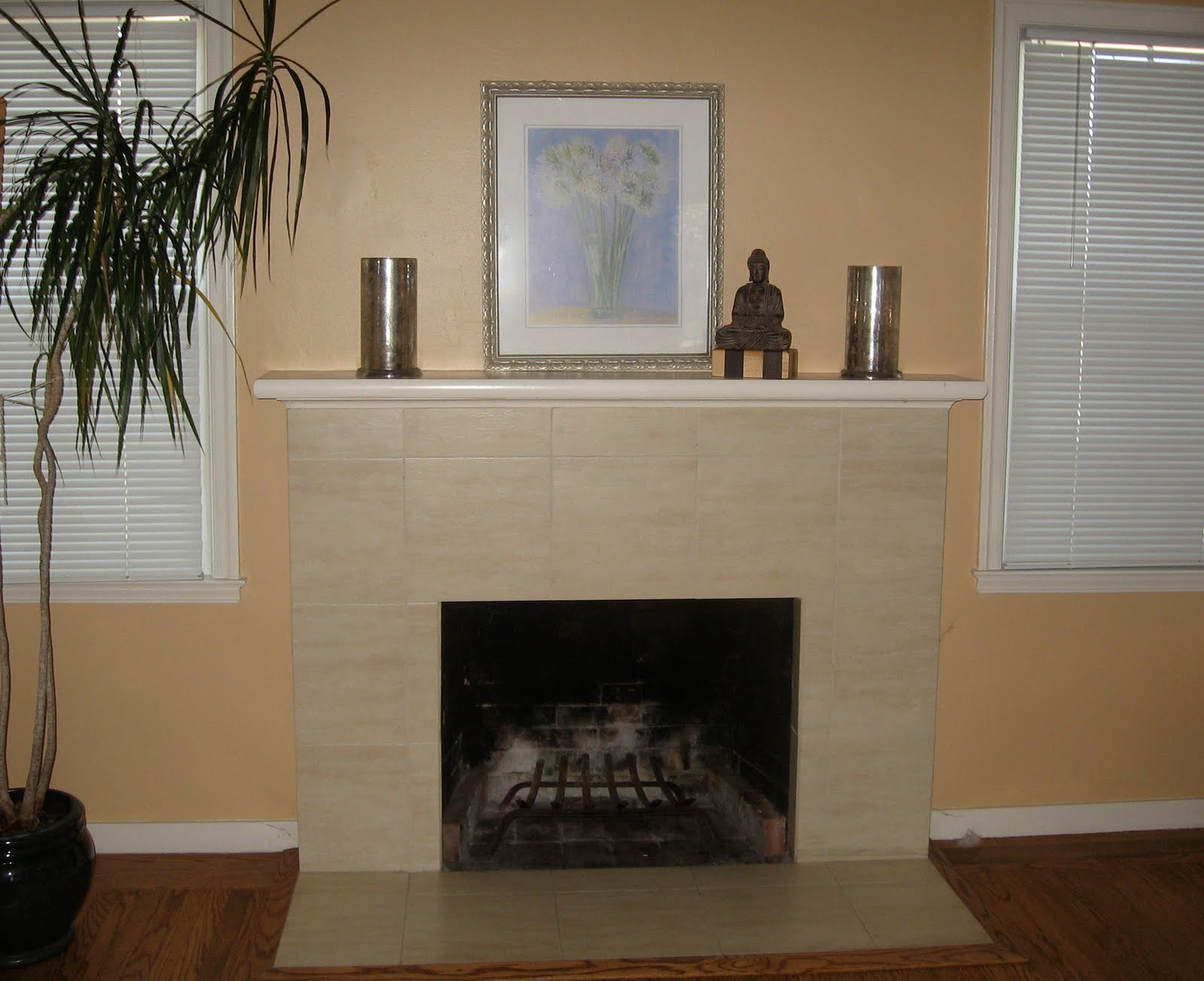 Gas Fireplace Surrounds Ideas
