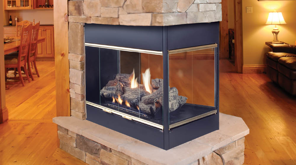 Three Sided Fireplace Insert Fireplace Design Ideas