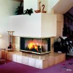 Three Sided Fireplace Wood Burning